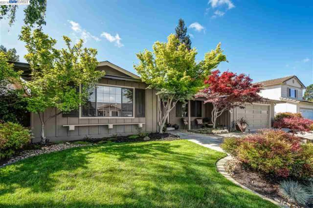 1889 Foxswallow Cir, Pleasanton, CA 94566 (#40818220) :: Armario Venema Homes Real Estate Team
