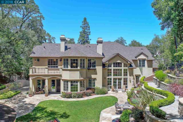 494 Del Amigo Rd, Danville, CA 94526 (#40818389) :: Armario Venema Homes Real Estate Team