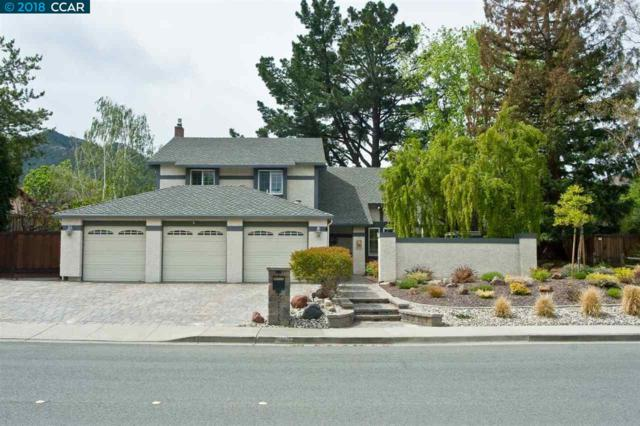 204 Mountaire Pkwy, Clayton, CA 94517 (#40818461) :: RE/MAX Blue Line