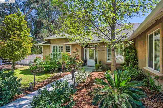 10728 Swede Creek Rd, PALO CEDRO, CA 96073 (#40818478) :: Armario Venema Homes Real Estate Team
