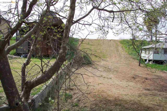 1472 Taylor Rd, Bethel Island, CA 94511 (#40818576) :: Armario Venema Homes Real Estate Team