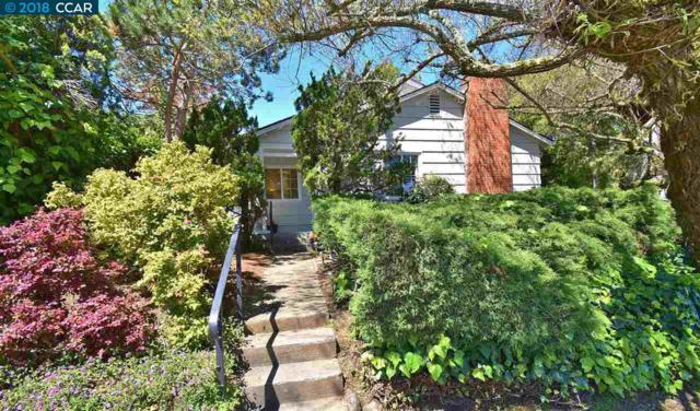 121 Ryan Ave., Mill Valley, CA 94941 (#40818603) :: Armario Venema Homes Real Estate Team