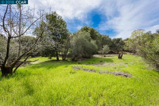 0 Adobe Lane, Orinda, CA 94563 (#40818768) :: The Rick Geha Team