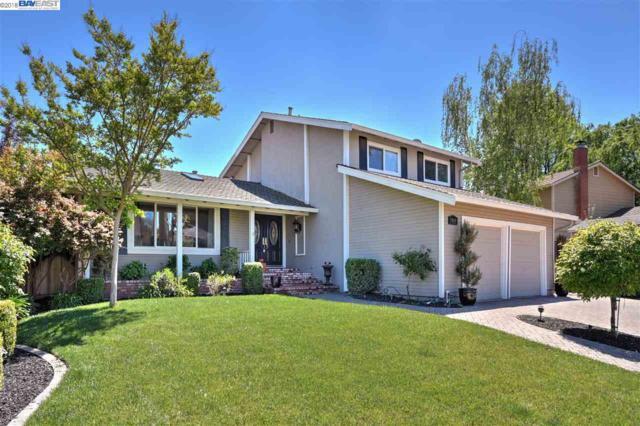 1969 Paseo Del Cajon, Pleasanton, CA 94566 (#40818829) :: Armario Venema Homes Real Estate Team