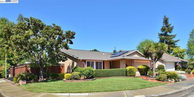 202 Yosemite Dr, Livermore, CA 94551 (#40818998) :: Armario Venema Homes Real Estate Team