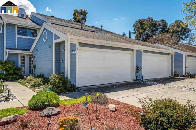 4739 Apple Tree Cmn, Livermore, CA 94551 (#40819010) :: Armario Venema Homes Real Estate Team