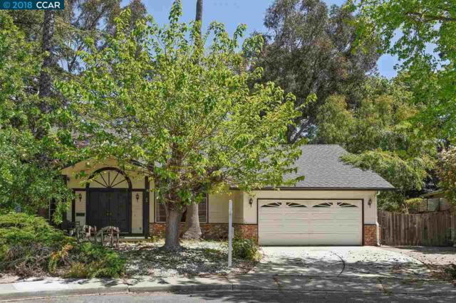 28 Horten Ct, Pleasant Hill, CA 94523 (#40819026) :: Estates by Wendy Team