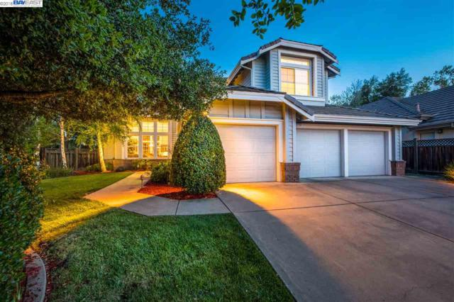 565 Trebbiano Pl, Pleasanton, CA 94566 (#40819090) :: Armario Venema Homes Real Estate Team