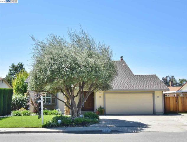 2518 Larrikeet Ct, Pleasanton, CA 94566 (#40819189) :: Armario Venema Homes Real Estate Team