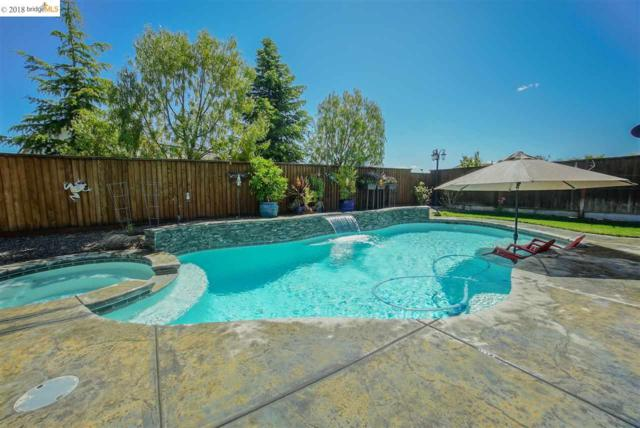 5585 Monaghan Way, Antioch, CA 94531 (#40819276) :: RE/MAX TRIBUTE