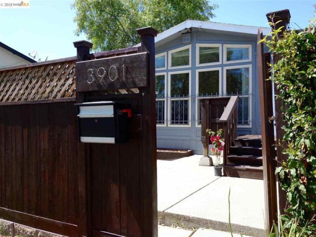 3901 3901 35th Avenue, Oakland, CA 94619 (#40819457) :: Armario Venema Homes Real Estate Team