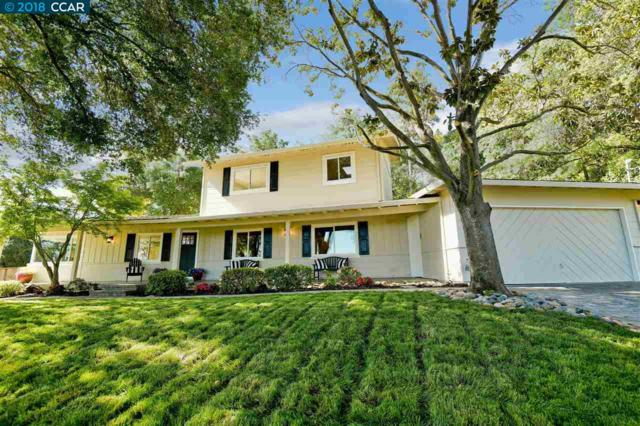 1855 Castle Hill Rd, Walnut Creek, CA 94595 (#40820212) :: The Rick Geha Team