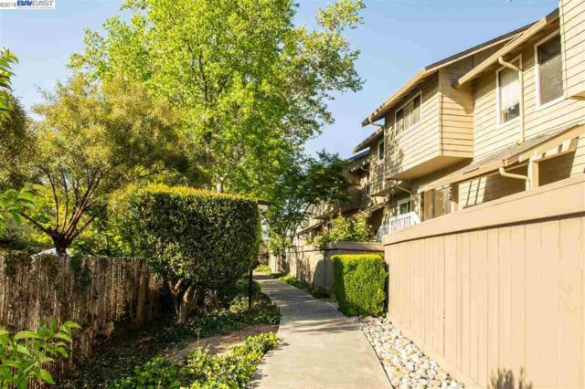 3555 Norton Way, Pleasanton, CA 94566 (#40820328) :: Estates by Wendy Team