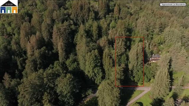 APN # 072-093-040, Woodside, CA 94062 (#40820382) :: Estates by Wendy Team