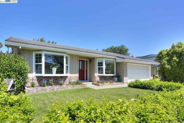 883 Seville Pl, Fremont, CA 94539 (#40820419) :: Armario Venema Homes Real Estate Team