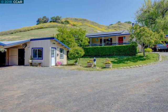 1105 Bear Creek Road, Martinez, CA 94553 (#40820531) :: Armario Venema Homes Real Estate Team