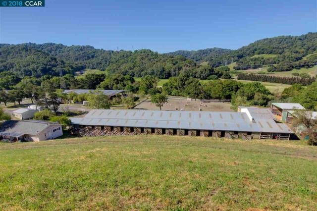 1105 Bear Creek Road, Martinez, CA 94553 (#40820539) :: Armario Venema Homes Real Estate Team