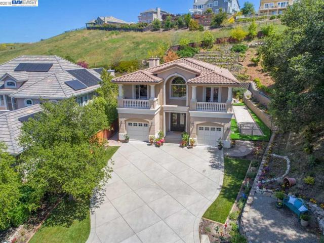 569 Kingsbridge Ct, San Ramon, CA 94583 (#40820563) :: Armario Venema Homes Real Estate Team