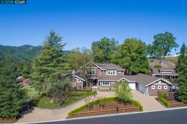 401 Shirlee Dr, Danville, CA 94526 (#40821004) :: Estates by Wendy Team