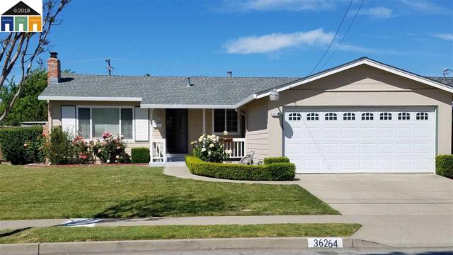 36264 Sandalwood St, Newark, CA 94560 (#40821567) :: The Rick Geha Team