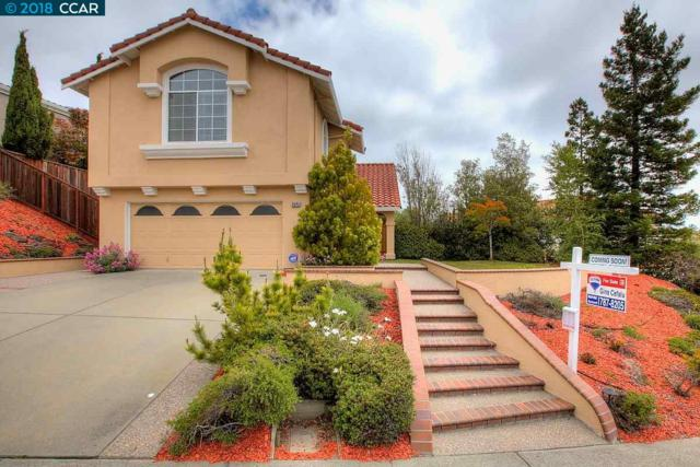 20761 Glenwood Dr, Castro Valley, CA 94552 (#40821773) :: The Rick Geha Team