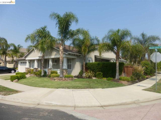 1031 Meadow Brook Dr, Brentwood, CA 94513 (#40821873) :: The Rick Geha Team