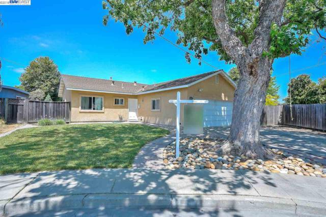 3631 Trenton Ct, Fremont, CA 94538 (#40822003) :: Estates by Wendy Team