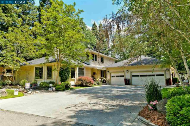 20 Dustin Ln, Danville, CA 94526 (#40822099) :: Realty World Property Network