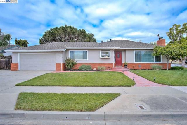 5103 Troy Ave, Fremont, CA 94536 (#40822105) :: The Rick Geha Team