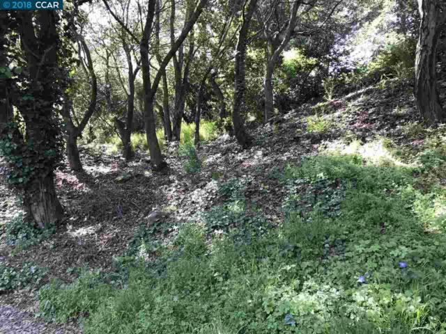 0 Dimm Way, Richmond, CA 94805 (#40822306) :: Estates by Wendy Team