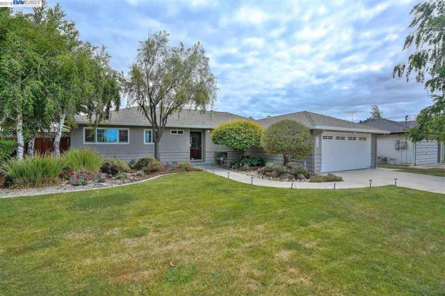 5110 Keystone Dr, Fremont, CA 94536 (#40822348) :: The Rick Geha Team
