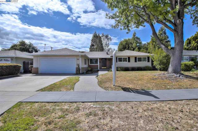 4217 Canfield Dr, Fremont, CA 94536 (#40822366) :: The Rick Geha Team