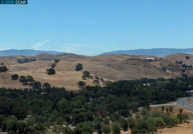 Finley Rd, San Ramon, CA 94583 (#40822829) :: Realty World Property Network