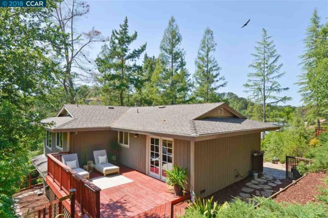 464 El Pintado Rd, Danville, CA 94526 (#40822895) :: Realty World Property Network