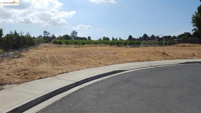 4901 Beldin Lane, Oakley, CA 94565 (#40822966) :: Estates by Wendy Team