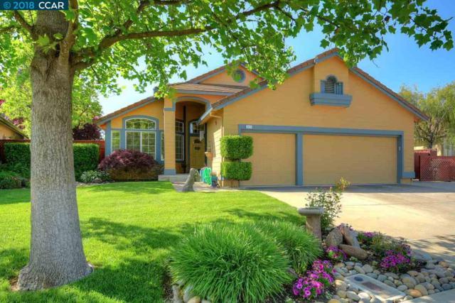 1171 Dana Cir, Livermore, CA 94550 (#40823147) :: J. Rockcliff Realtors