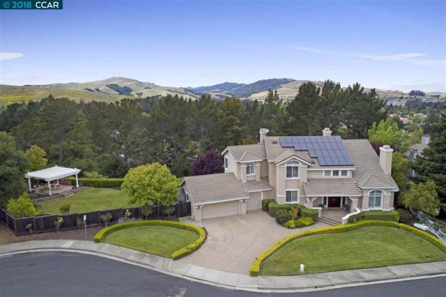 2870 Fieldview Ter, San Ramon, CA 94583 (#40823406) :: J. Rockcliff Realtors