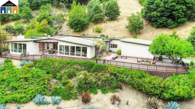 740 Miner Rd, Orinda, CA 94563 (#40823427) :: Estates by Wendy Team