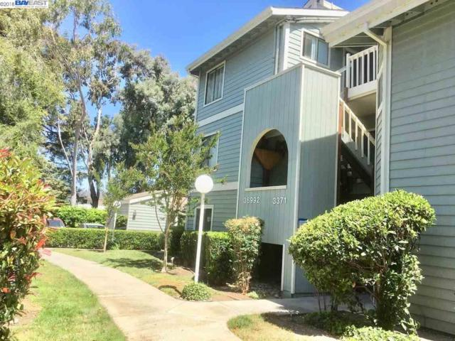 3371 Baywood Terrace #111, Fremont, CA 94536 (#40823951) :: The Grubb Company