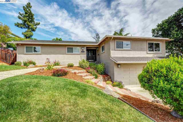 3737 Pinot Ct, Pleasanton, CA 94566 (#40824131) :: Armario Venema Homes Real Estate Team