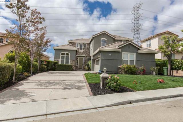 111 Meadows Ct, Fremont, CA 94539 (#40824421) :: Armario Venema Homes Real Estate Team