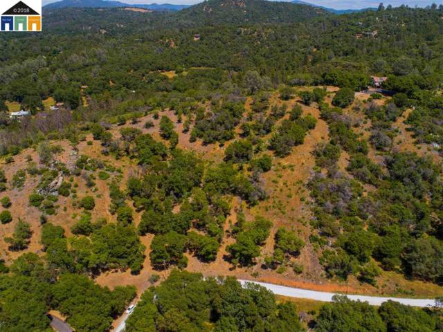 18221 Aarondale Road, Sonora, CA 95370 (#40824720) :: Armario Venema Homes Real Estate Team