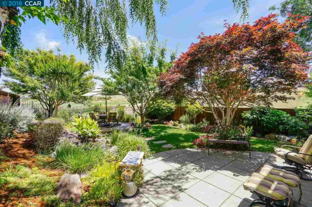1256 Canyon Side Ave, San Ramon, CA 94582 (#40824961) :: Armario Venema Homes Real Estate Team