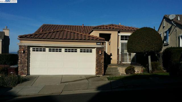 8239 Skyline Cir, Oakland, CA 94605 (#40825051) :: Armario Venema Homes Real Estate Team