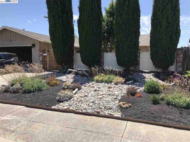 1536 Marigold Rd, Livermore, CA 94551 (#40825306) :: Armario Venema Homes Real Estate Team