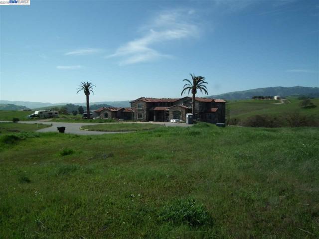 7765 Laguna Heights Court, Sunol, CA 94586 (#40825489) :: Blue Line Property Group