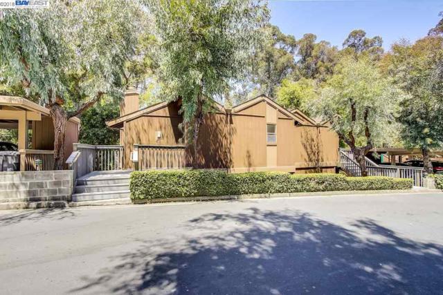 2013 Oak Creek Pl, Hayward, CA 94541 (#40825724) :: Armario Venema Homes Real Estate Team
