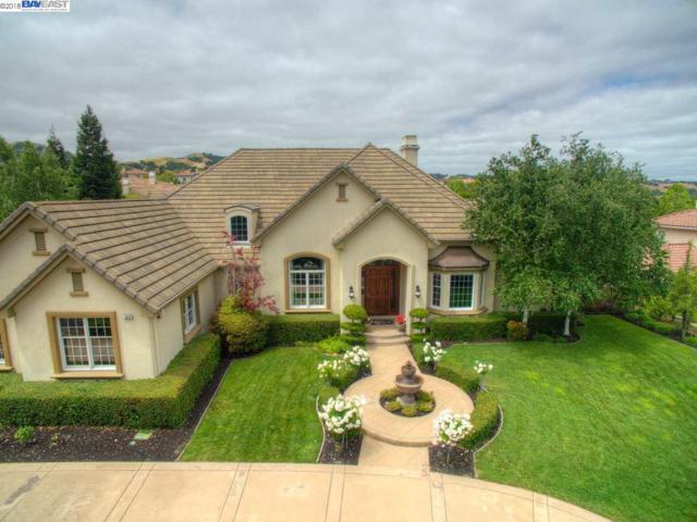 3529 Villero Ct, Pleasanton, CA 94566 (#40825983) :: Armario Venema Homes Real Estate Team