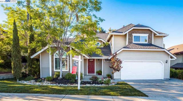 5877 San Juan Way, Pleasanton, CA 94566 (#40826021) :: Armario Venema Homes Real Estate Team