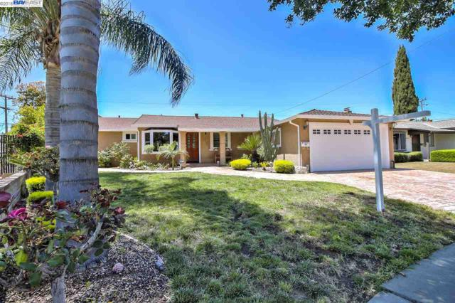 40575 Verne St, Fremont, CA 94538 (#40826708) :: The Grubb Company